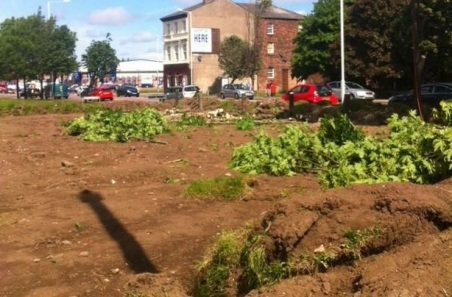 davies churned up land