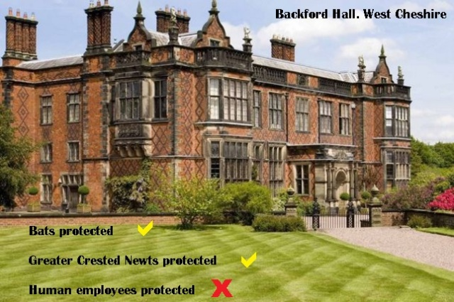 my old work location - backford hall