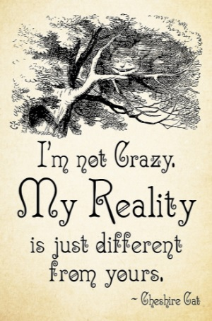 im-not-crazy-my-reality-is-just-different-from-yours