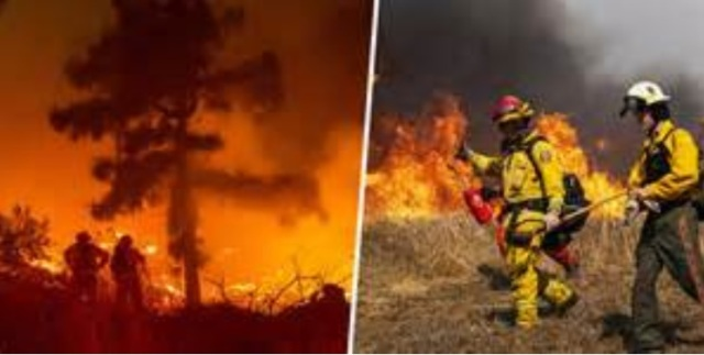 Australian firefighters 4